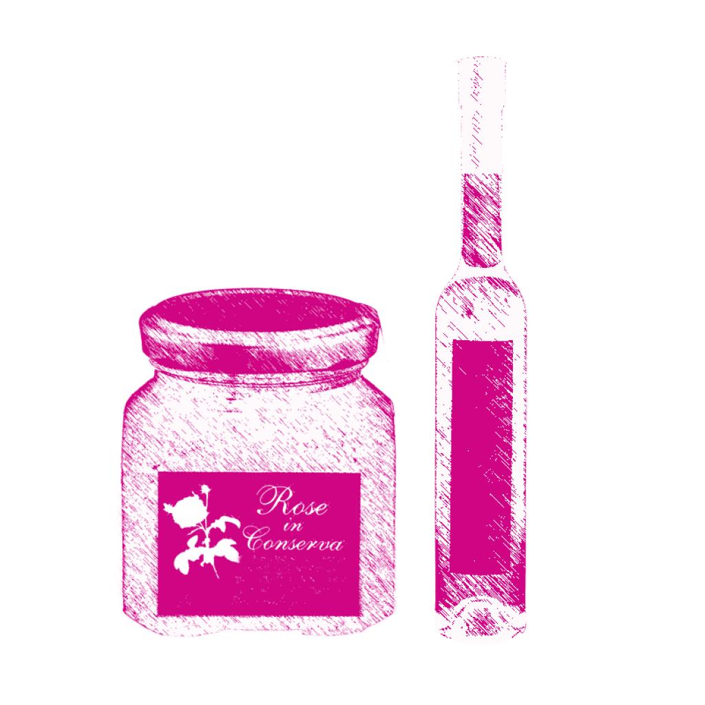 Rosa di Magliano vasetti schizzo