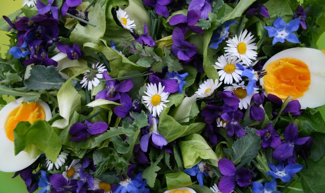 fiori_banner